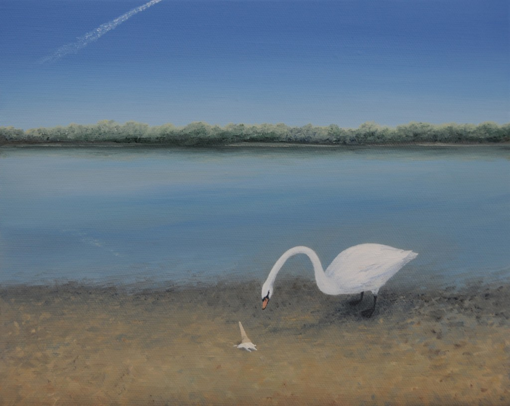 Swan and ice-cream