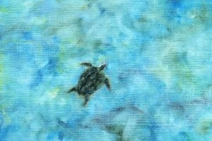 Turtle – SOLD