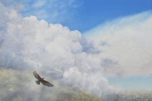 City and eagle